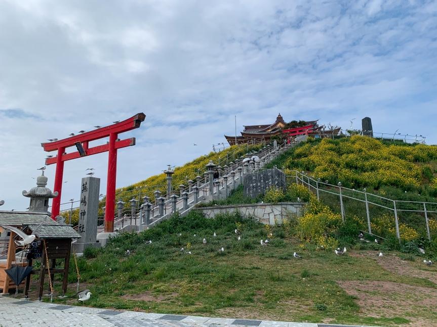 Kabushima Shrine (蕪嶋神社) InSpring